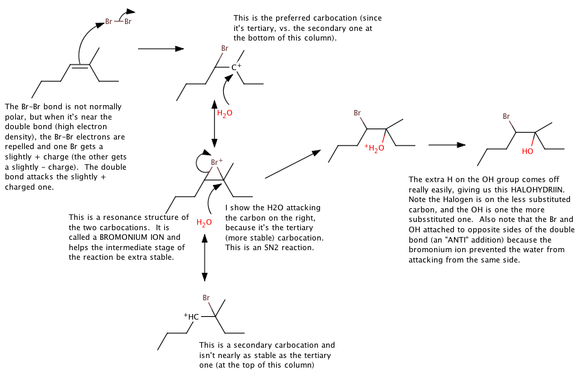 Br2-Adding-Across-Double-Bond-Alkene